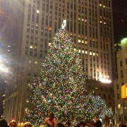 Rockefeller tree at night!
